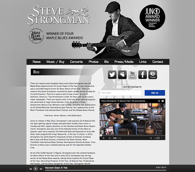 Steve Strongman Website page example